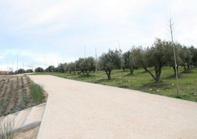 Recuperación mejora y dotación de espacios verdes en torno a El Olivar como elemento integrado en el entorno urbano